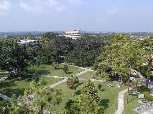 University of Florida Real Estate